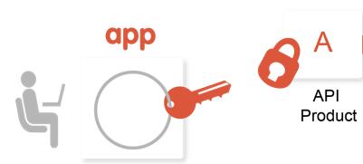 クライアント アプリには、API プロダクトに関連付けられている API を呼び出すためのキーが必要です。