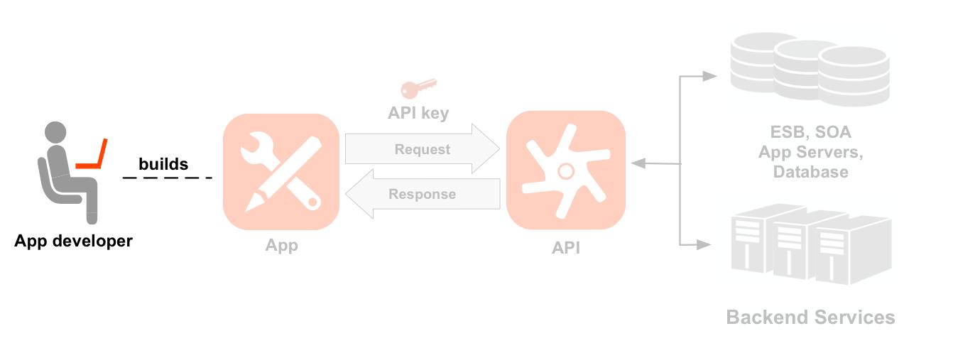 左から右への順でデベロッパー、アプリ、API、バックエンド サービスを示す図。デベロッパー アイコンがハイライト表示されています。ハイライトされたデベロッパーから始まる点線は、デベロッパーが作成したアプリのアイコンを指しています。アプリと API アイコンの間の矢印は、API アイコンに対するリクエストとレスポンスのフローを示しています。リクエストの上にアプリキーがあります。API アイコンの下にはリソースパスのセットが 2 つあり、これらは 2 つの API プロダクト(Location プロダクトと Media プロダクト)にグループ化されています。Location プロダクトには /countries、/cities、/languages 用のリソースがあり、Media プロダクトには /books、/magazines、/movies 用のリソースがあります。API の右側には、API が呼び出すバックエンド リソース(データベース、エンタープライズ サービスバス、アプリサーバー、汎用バックエンドなど)があります。