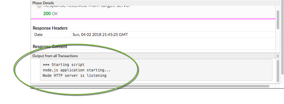 Debugging and troubleshooting Node js proxies   Apigee Docs