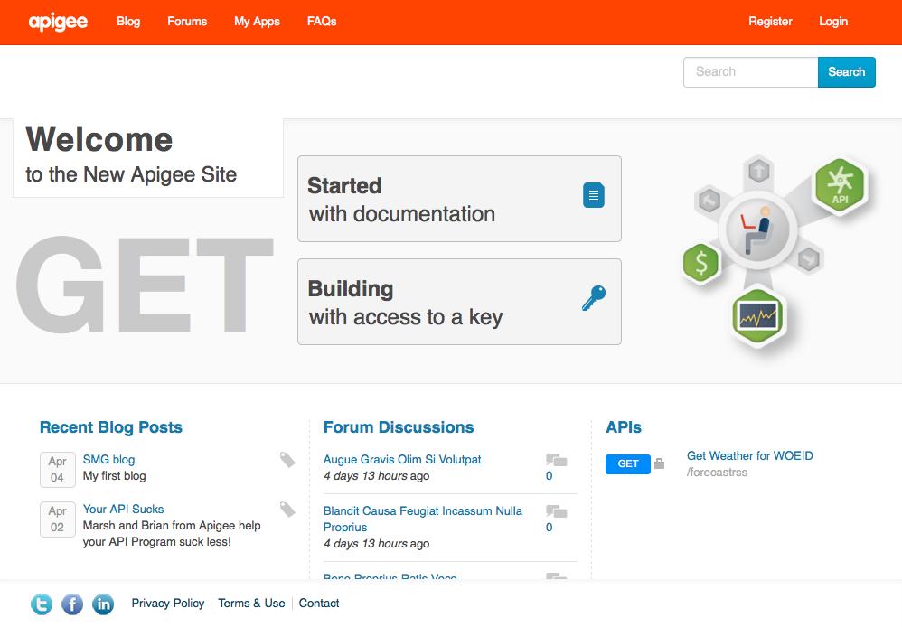 Home page for the default developer portal