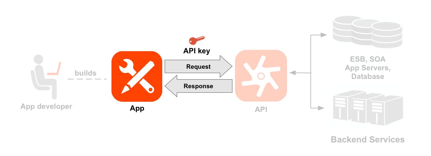 左から右への順でデベロッパー、アプリ、API、バックエンド サービスを示す図。アプリ、リクエスト / レスポンス、API キーの矢印がハイライト表示されています。デベロッパーから始まる点線は、デベロッパーが作成したアプリのアイコンを指しています。アプリと API アイコンの間の矢印は、API アイコンに対するリクエストとレスポンスのフローを示しています。リクエストの上にアプリキーがあります。API アイコンとリソースがハイライト表示されています。API アイコンの下にはリソースパスのセットが 2 つあり、これらは 2 つの API プロダクト(Location プロダクトと Media プロダクト)にグループ化されています。Location プロダクトには /countries、/cities、/languages 用のリソースがあり、Media プロダクトには /books、/magazines、/movies 用のリソースがあります。API の右側には、API が呼び出すバックエンド リソース(データベース、エンタープライズ サービスバス、アプリサーバー、汎用バックエンドなど)があります。